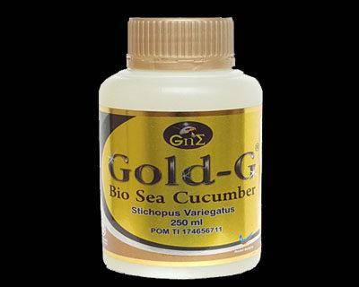 Gamat Gold G Makassar